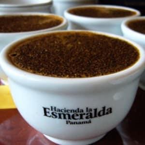 hacienda la esmeralda dure koffie