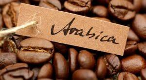 Beste Koffiebonen Arabica