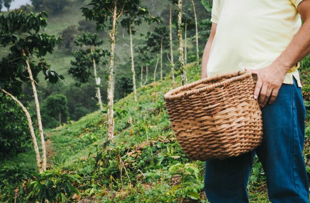 colombiaanse koffie koffieboeren medellin