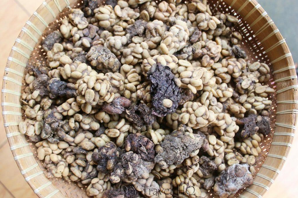 Kopi loewak koffie Sumatra