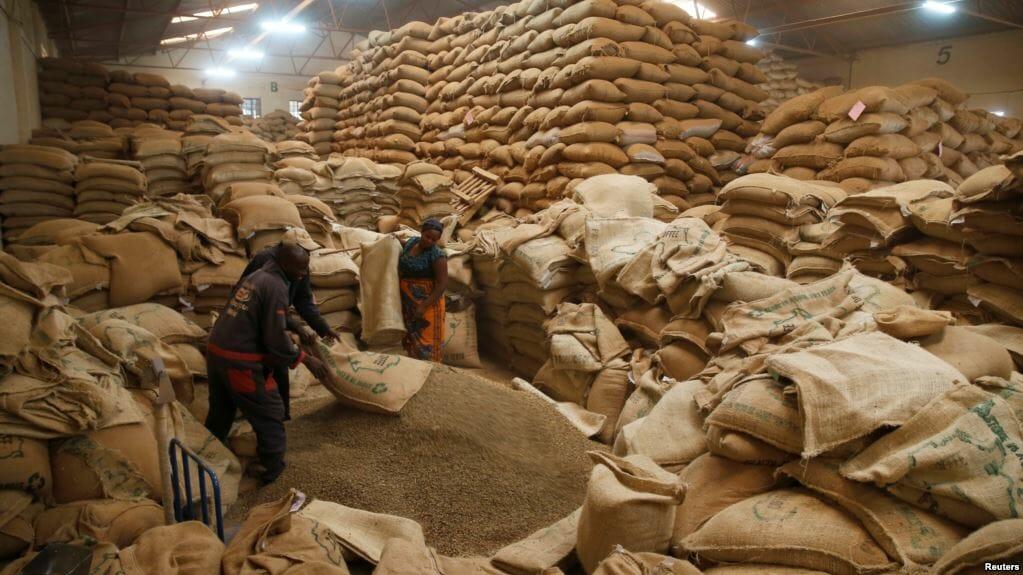 Opslag Keniaanse koffie