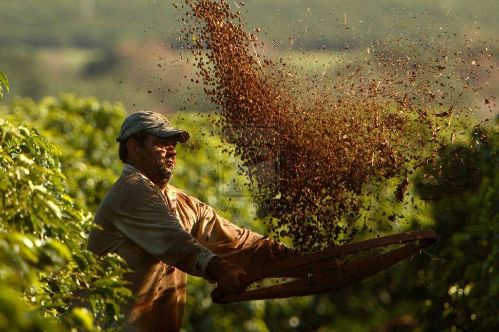 braziliaanse koffie proeven
