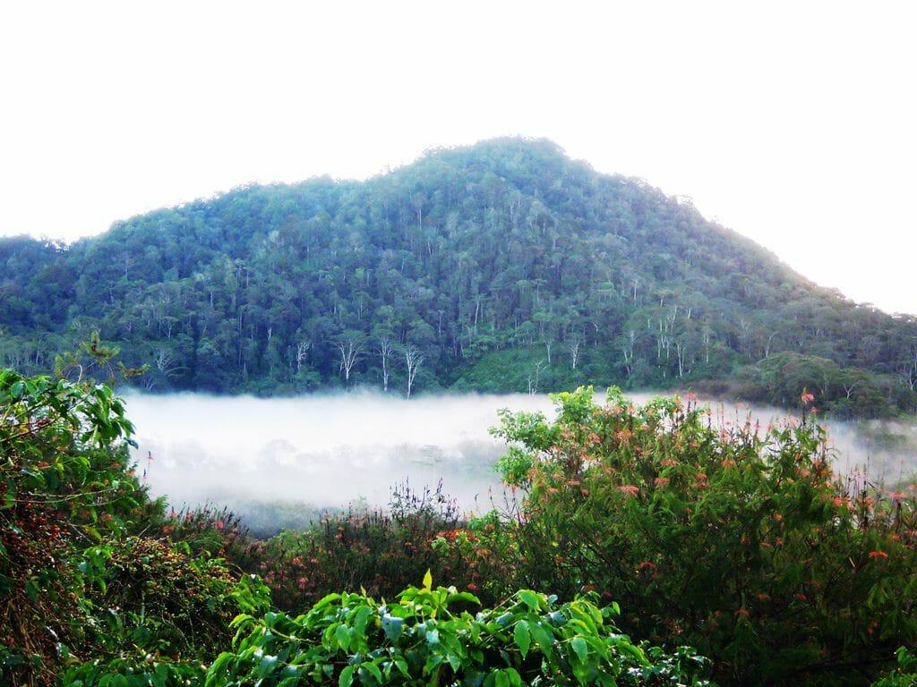 sulawesi landschap