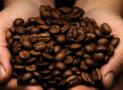 Tips voor het kiezen van espresso bonen