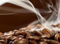 Hoe kies je de beste koffiebrander
